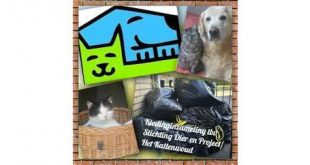 Stichting Dier en Project organiseert Kledingmiddag