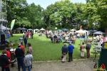 053 - 50 jaar Cultuurraad - Essen 2017 - (c) Noordernieuws.be