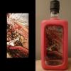 Nancy-Luijks-ArtByNans-Art-in-a-Bottle-inCollage-Painting-2