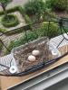 Bijzondere-nestplaats-in-raamkozijn4
