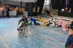 176 Carnaval Essen - Optredens Heuvelhal - (c) Noordernieuws.be 2020 - HDB_0525