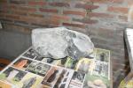 09 De Bijzondere Hobby van Bie Mennes - (c) noordernieuws.be