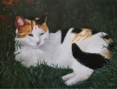 De Hobby van Chantal Durham-Bogers - Schilderen - 02 - Noordernieuws.be