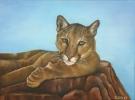 De Hobby van Chantal Durham-Bogers - Schilderen - 04 - Noordernieuws.be