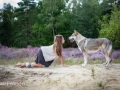 102 Saarlooswolfhond - Lisa van Hoof - Noordernieuws.be - 003