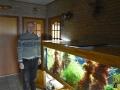 150 Piet Hectors - Zeepaardjes kweken - Zoutwater Aquarium - (c) Noordernieuws.be 2019 - HDB_2916