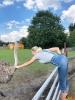 101 Wendy Adriaens - Hobby Struisvogels - Noordernieuws.be - 0cf3a576-626a-43aa-8da0-a31ea5f55a38