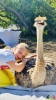 124 Wendy Adriaens - Hobby Struisvogels - Noordernieuws.be - fullsizeoutput_1a9b