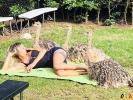141 Wendy Adriaens - Hobby Struisvogels - Noordernieuws.be - fullsizeoutput_194a