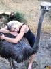 144 Wendy Adriaens - Hobby Struisvogels - Noordernieuws.be - fullsizeoutput_1803