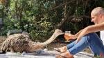 180 Wendy Adriaens - Hobby Struisvogels - Noordernieuws.be - PNZGE5438