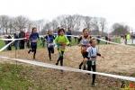 133 Esak - Provinciaal Kampioenschap Veldlopen 2020 - Antwerpen - Noordernieuws.be - 31