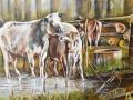 18 Essense Kunstvriendenkring - Andre Geerts - 2017 - (c) Noordernieuws.be