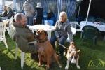 20 Canina - Wandeldag en Rommelmarkt - ©Noordernieuws - DSC_3302