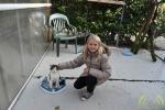 27 Canina - Wandeldag en Rommelmarkt - ©Noordernieuws - DSC_3309