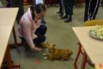 118 Leerlingen Freinetschool Essen vieren hondje Lewis 3 jaar - (c) Noordernieuws.be 2019 - HDB_2070