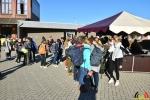 36 Leerlingen Instituut Heilig Hart Kalmthout - Warmste Week 2018 - (c) Noordernieuws.be - HDB_0500