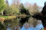 121 Arboretum Kalmthout - Miss Hamamelis verkiezing 2020 - (c) Noordernieuws.be - 19