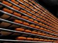 06 - Kapellen - Nieuwe polyvalente zaal LUX officieel geopend - (c) Noordernieuws.be 2019 - 007