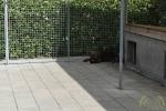 24 Canina 2016 - Essen - ©Noordernieuws - DSC_1098