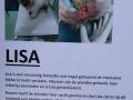 144 Open dag Stichting Dier en Project Nispen - (c) Noordernieuws.be 2019 - HDB_8240