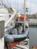 156 Greenpeace - Rainbow Warrior doet Antwerpen aan - (c) Noordernieuws.be - 56