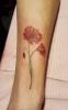 Els Deckers - Beroep Tatoeëerder - Tattoos - Tatoeage - (c) Noordernieuws.be 2020 - 20200111_111127s85
