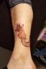 Els Deckers - Beroep Tatoeëerder - Tattoos - Tatoeage - (c) Noordernieuws.be 2020 - 20200201_114247s85