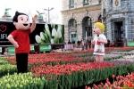120 Vandaag gratis Tulpenpluk met Suske en Wiske - Noordernieuws.be - 18