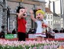 122 Vandaag gratis Tulpenpluk met Suske en Wiske - Noordernieuws.be - 20