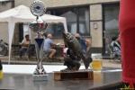 154 Visrookwedstrijd De Knorhaan 2018 - Essen - (c) Noordernieuws.be - HDB_8663