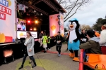113 Warmathon Antwerpen trekt 8750 deelnemers - Noordernieuws.be 2019 - 20