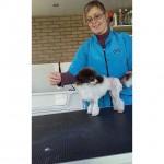 Noordernieuws - Furfection - honden kapsalon - Trimsalon