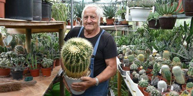 René Schenk wint 34ste bebloemingswedstrijd