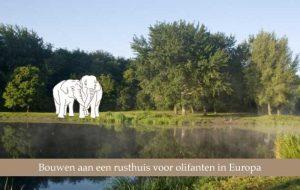 ria-bauwens-maakt-zich-sterk-voor-afgedankte-olifanten