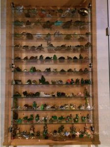 De schildpadjesverzameling van Sophie