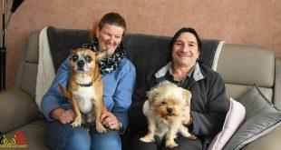 Hondje Stimpy nog weken kreupel na trap inbreker