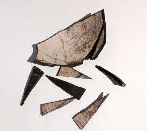 Kokos dat gebruikt werd voor het collier