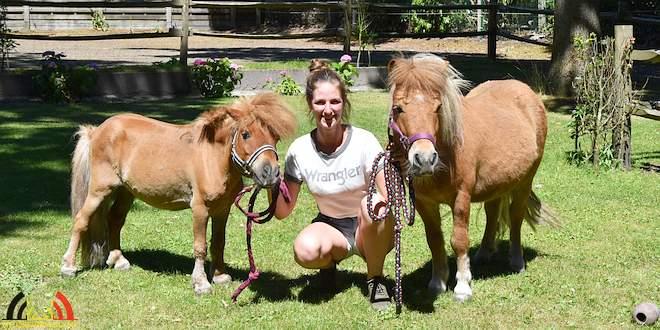 De Hobby van Kyona Haverhals - Paardrijden en Paardensport - (c) Noordernieuws.be 2018 - HDB_7879