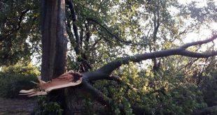 Noodweer treft Roosendaal