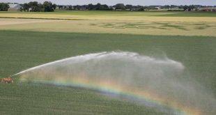 Provincie versoepelt waterbesparende maatregelen