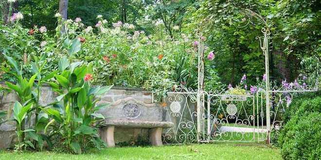 7 to-do's voor je tuin in augustus