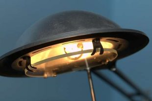 Verbod op halogeenlampen vanaf 1 september