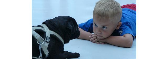 Kinderen en dieren echte liefde