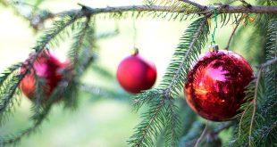 Openingsuren gemeentediensten tijdens feestdagen