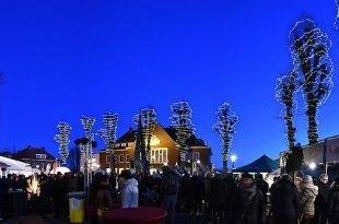 Nieuwjaarsborrel 2019 - Gemeente Essen - (c) Noordernieuws.be - DSC_8856u80