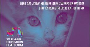 4 april Wereld Zwerfdierendag