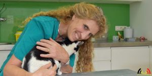 Ilse Castelijns - Dierenartsenpraktijk 't Hof - Gold Status Cat Friendly Clinic