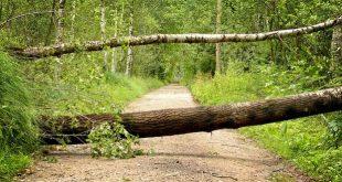 Mogelijk stormweer zondag 10 maart erkend als ramp