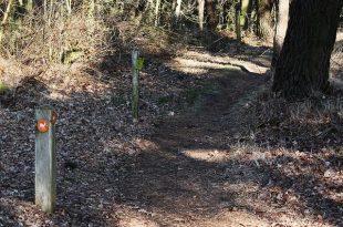 Nieuwe langeafstandsroute Ree van 24 km
